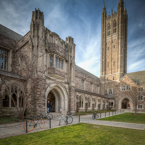 Princeton University Best INTJ School