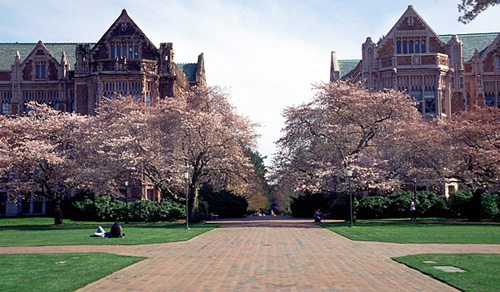 University of Washington Best ENTJ Colleges