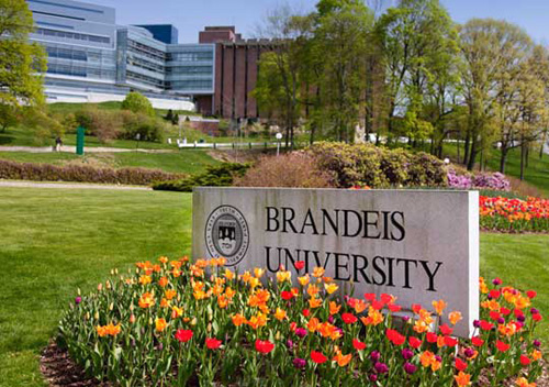 Brandeis University Best Small Colleges for INFJ
